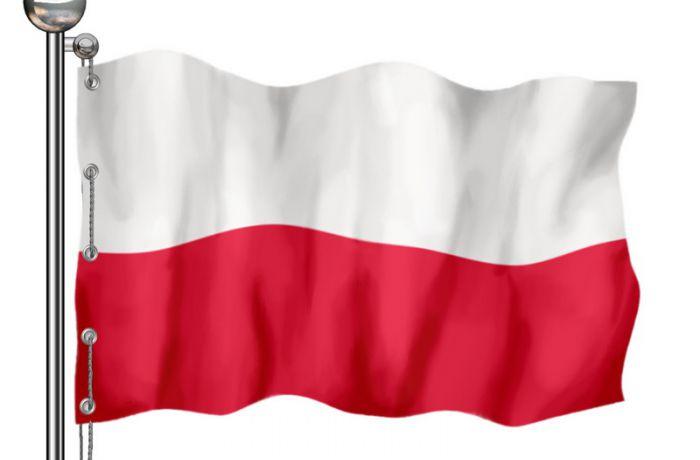 день Полонии и поляков за границей