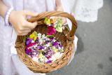 Нарядно одетые девочки рассыпают из корзинок лепестки роз перед процессией