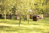 быт в польской деревне