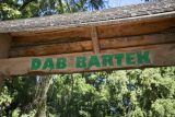 Дуб Бартек