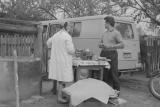 В 1958 году стены завода покинули 313 машин Ныса серии N58