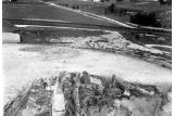 Корни дуба, найденные в кургане Крака
