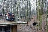 Фото с сайта Познаньского зоопарка